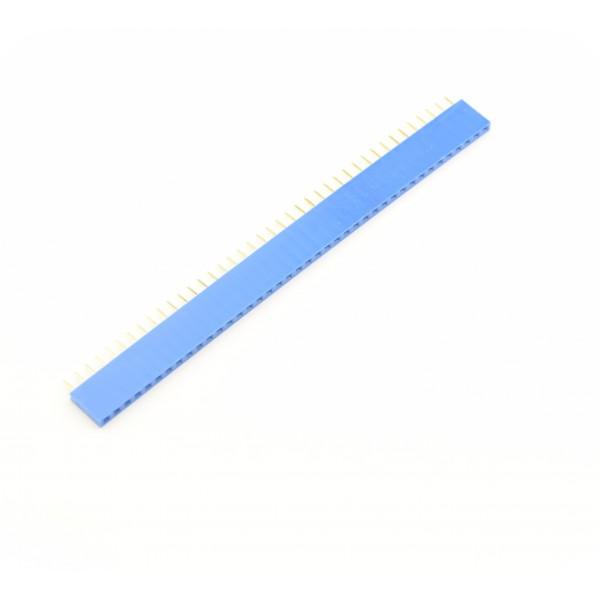 40 Pins header Female - Blauw