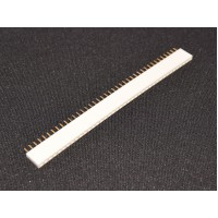 40 Pins header Female - White