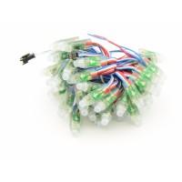 WS2811 Digitale 8mm RGB LED String - IP68 Waterdicht 50 stuks